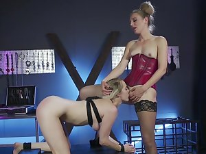Outstanding lesbian BDSM stint near Mona Wales and Cadence Lux